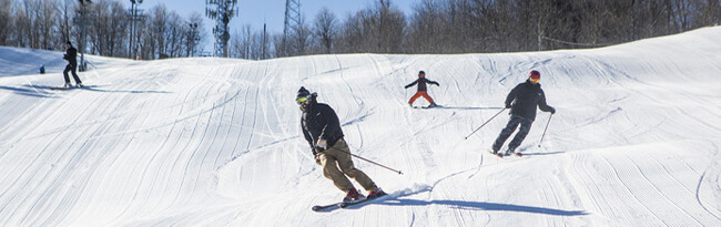 people skiing down a hill